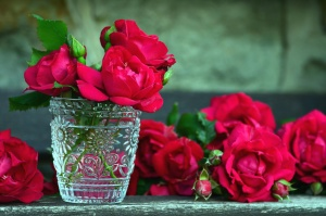 rose, glass, water, flowers, bud