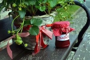 jar, benches, pots, flowers, plant