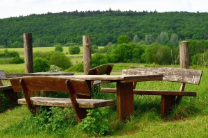 bench, table, forest, mountain, meadow, wood, grass