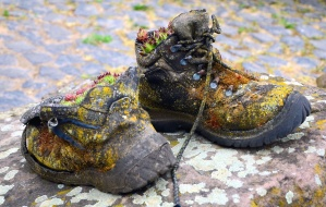 shoe, dirty, soil, colorful