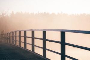 bridge, fog, mist, nature
