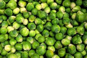 cabbage, vegetables, green