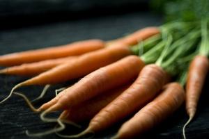 vegetarian, carrot, vegetable, food
