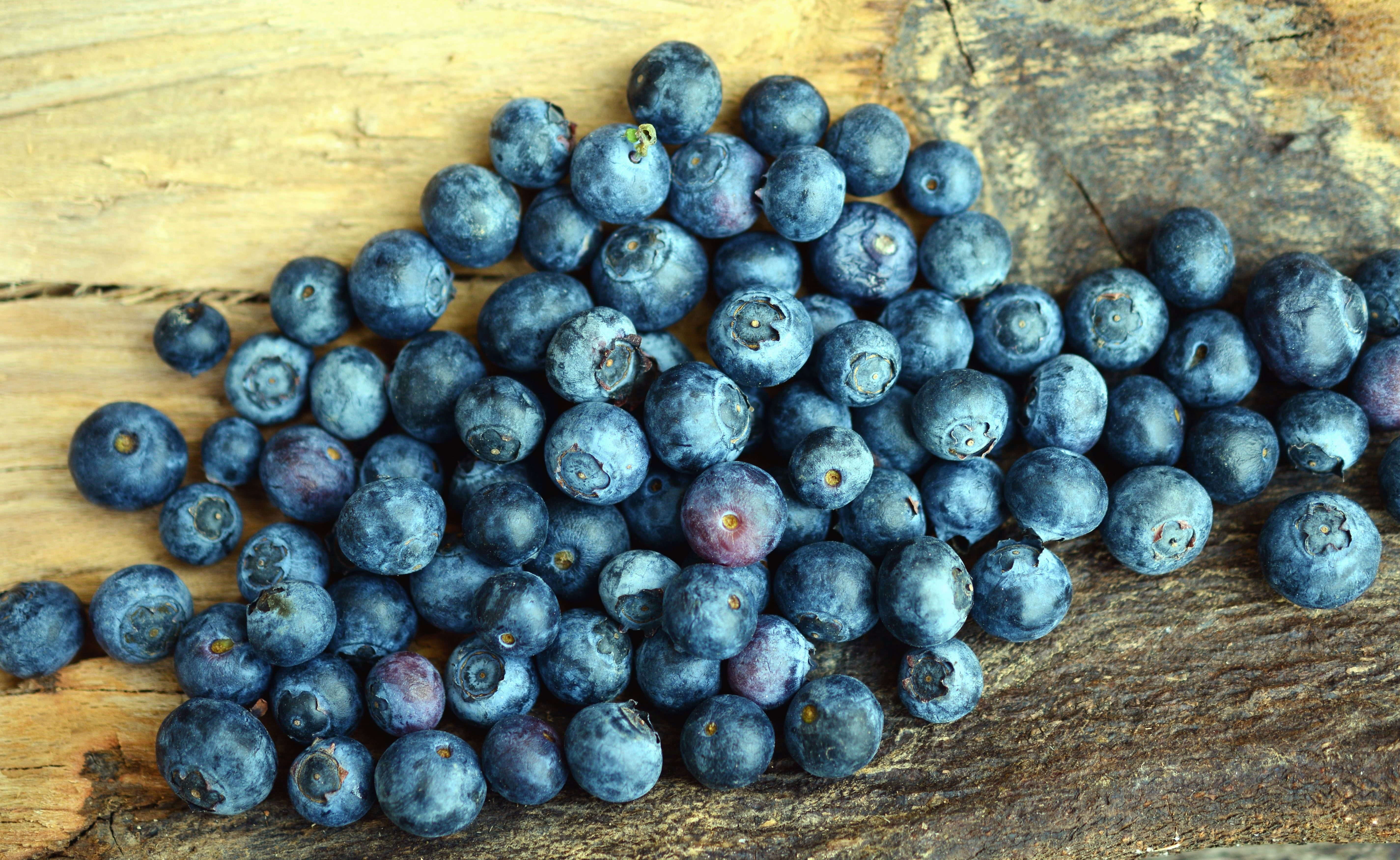 Heidelbeere, Obst, Essen, Tisch