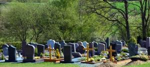 tree, cemetery, monument, cross, grass