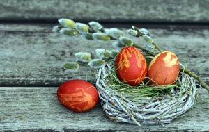 branch, egg, nest, paint, easter
