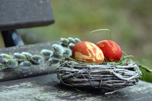 egg, nest, bench, colorful, easter