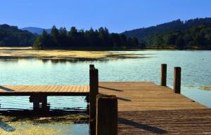 Montagne, lac, quai, eau, bois, forêt