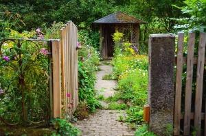 Jardín, puerta, metal, planta, cerca