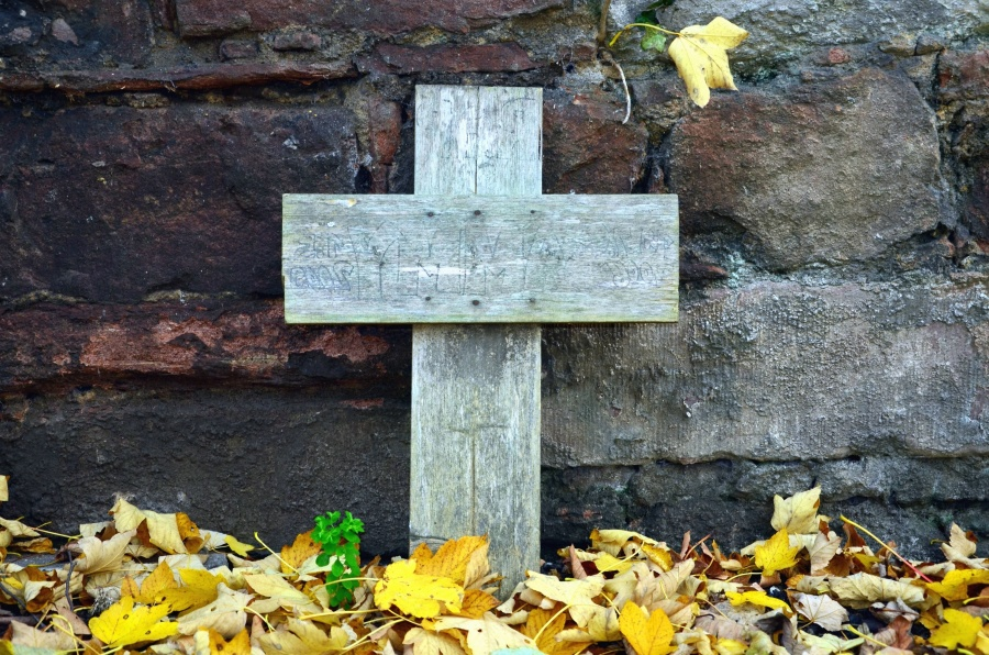 cross, wood, leaf, wall, stone