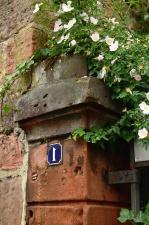 Architektúra, kameň, číslo, kvet, list, závod