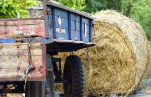 짚으로 bales, 트레일러, 농장, 바퀴, 나무