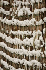 snow, fence, winter, cold, frost