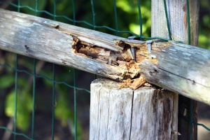 Recinzione, legno, metallo, rete, chiodo