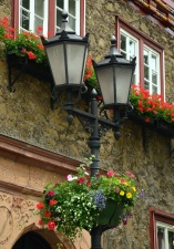 building, architecture, flower, window, street
