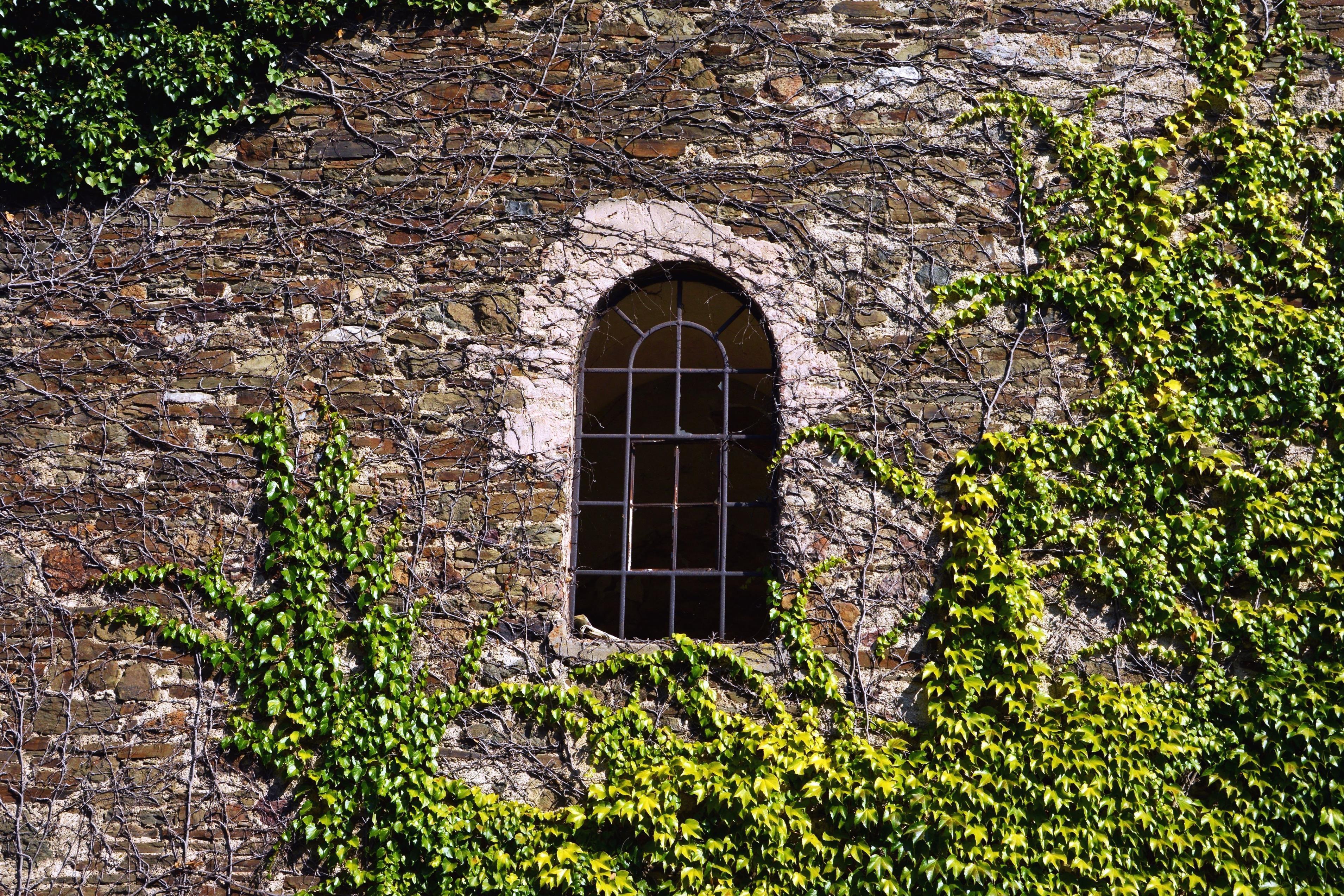 Kostenlose bild fenster geb ude architektur fassade ziegel wand - Fenster turen bauelemente busch duisburg ...