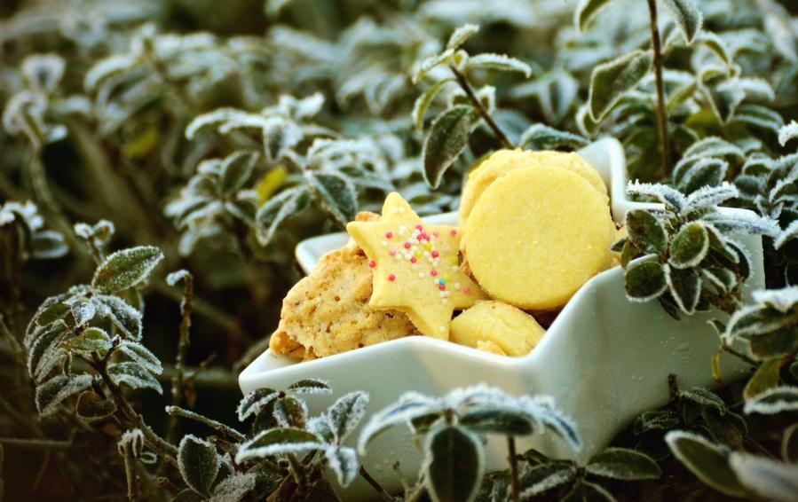 tårta, blad, skål, kex, kallt, vintern, frysta, kallt