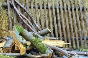 Heno, cerca, madera, troncos, musgo, árbol