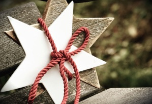 star, tree, art, decoration, rope, bench
