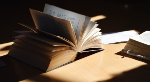 daylight, table, book, learning, reading