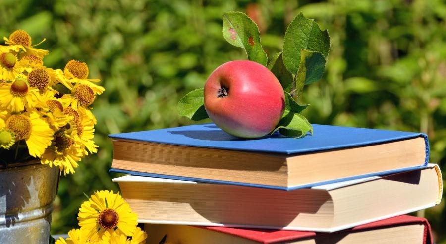 书, 苹果, 花, 自然, 果子, 花瓣