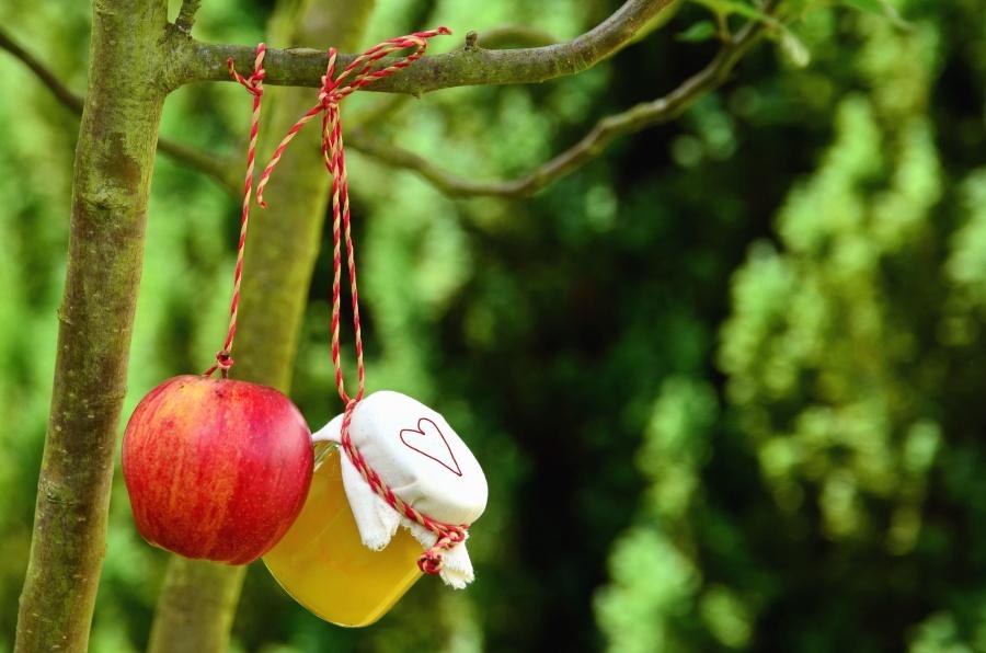 Manzana, madera, miel, bosque, cuerda, corazón