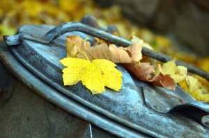 autumn, leaf, cover, metal, trash can