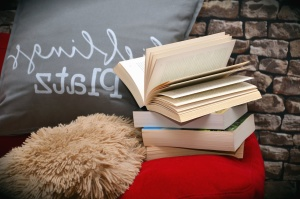 wall, brick, book, pillow, bed, learning