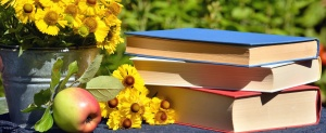 book, flower, apple, glass, bucket, still life