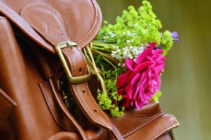 bag, leather, buckle, flower, petal, plant, decoration