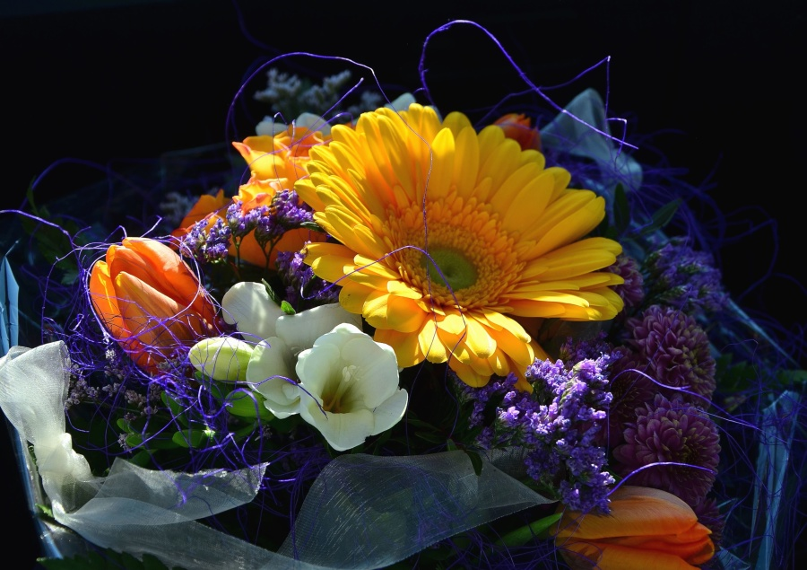 Tulipano, bouquet di fiori, arrangiamento, vita ancora