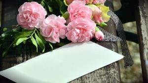 rose, love, bench, paper, bouquet, romantic