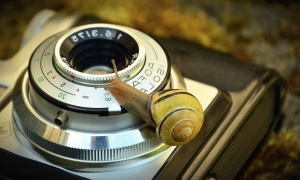 fotoaparát, objektív, antique, mechanizmus