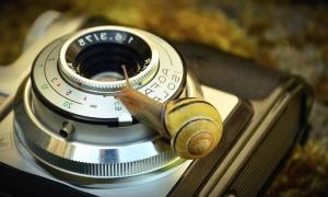 Foto kamera, objektiv, antikk, mekanisme