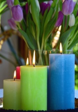 candle, flower, flame, wax, warm, tulip