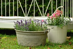 bucket, flower, grass, garden, decoration, flowering