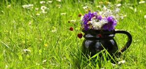ceramics, cup, flower, bouquet, petal, grass, nature
