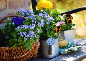 Nature morte, panier, fleur, décoration, mur, pierre