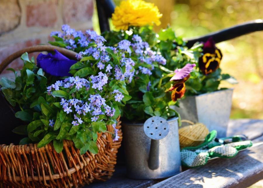 Νεκρή φύση, καλάθι, λουλούδι, τοίχο, διακόσμηση πέτρα