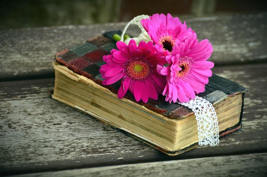 decoration, flower, pink flower, book, table