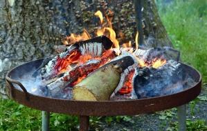 dřevo, oheň, gril, kouř, teplá, plamen