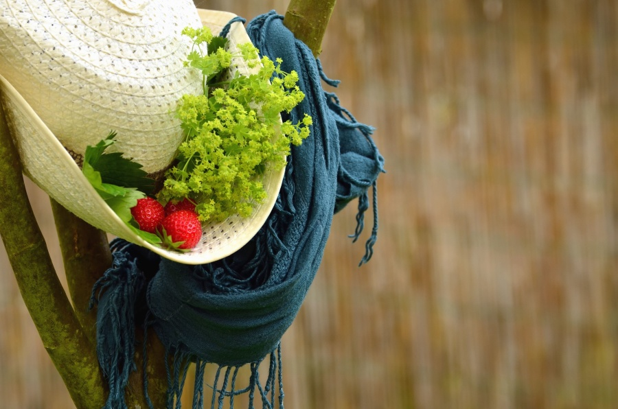Fresa, sombrero, hoja, bufanda