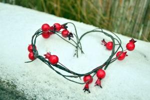 Rose hanche, fruit, coeur, forme, décoration, romance