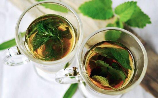 mint, water, glass, tea, herb