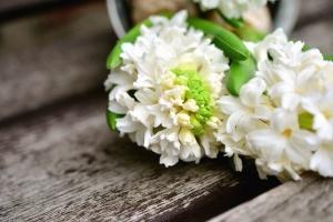 květ, okvětní lístek, povrchové, listů rostlin,