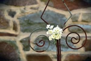kvetina, okvetné lístok, kov, plot, stenu, kameň