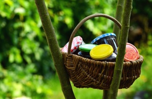 basket, jar, jam, nature, tree