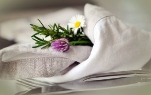 daisy, flower, plant, petal, leaf, rosemary, cloth, decoration