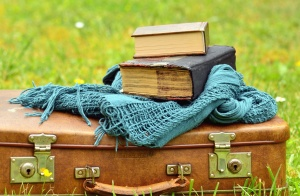 suitcase, book, retro, leather, grass, scarf