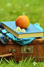 suitcase, flower, book, apple, fruit, daisy, scarf